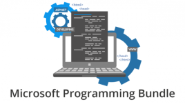 Microsoft Programming Bundle