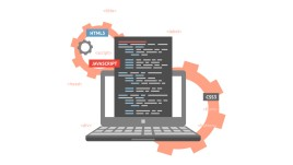 Programming Professional Bundle