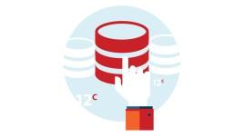 Oracle 12c OCP 1Z0-061 SQL Fundamentals