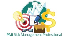 PMI Risk Management Professional